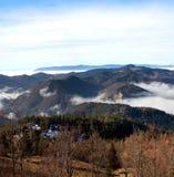 Tara Mountain Royaltyfri Fotografi