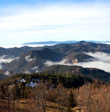 Tara Mountain Royalty Free Stock Photography