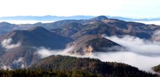 Tara Mountain Royalty Free Stock Photos