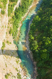 Tara River Royalty Free Stock Photography