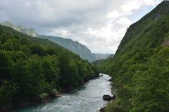 Tara River Royaltyfria Bilder