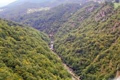 Tara River Image libre de droits