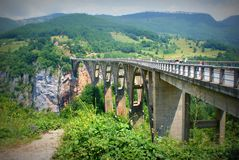 Tara River Bridge (Montenegro) Arkivbilder