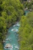 Tara River Canyon Imagenes de archivo