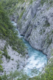 Tara River Canyon Image stock