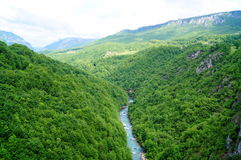 Tara River Canyon Imagen de archivo libre de regalías
