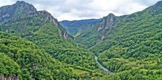 Tara River Canyon Imágenes de archivo libres de regalías