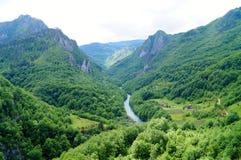 Tara River Canyon Fotografía de archivo