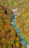 Tara river canyon. And the cable over it, National park Durmitor in autumn, Montenegro, view from above Stock Photography