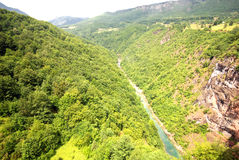 Tara river canyon ( Montenegro) Stock Photo