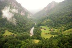 Tara river canyon (Montenegro ) Stock Images