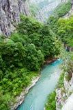 Tara River Canyon, Montenegro Royalty Free Stock Image