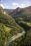 Tara River Canyon, Montenegro royalty free stock photo