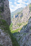Tara river canyon in Montenegro Stock Image