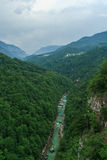 Tara River Canyon. Montenegro. View of the River Tara Bridge Stock Photography