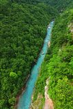 The Tara River Canyon also known as the Tara River Gorge in Montenegro Stock Photo