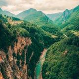 Tara River e a garganta, e seu campo, em Montenegro do norte Montenegro, Tara River ao lado da ponte de Djurdjevi fotos de stock royalty free