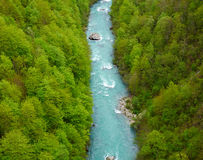 Tara river, Montenegro. Royalty Free Stock Photography