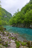 Tara river in spring, Montenegro Stock Photos