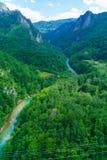 Tara River y barranco Fotos de archivo libres de regalías