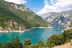 Tara rivier, Montenegro, Crna Gora Stock Afbeeldingen