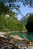 Tara rivier, Montenegro, Crna Gora Royalty-vrije Stock Afbeelding