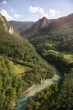 Tara riviercanion, Montenegro royalty-vrije stock foto