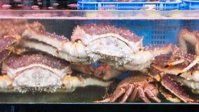Taraba overzeese koningskrabben voor verkoop Stock Fotografie