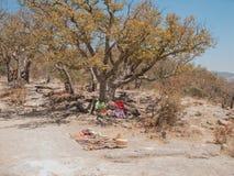 Tarahumara印地安人 免版税库存图片