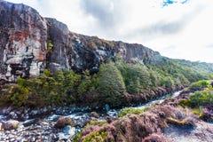 Taranaki cai córrego - parque nacional de Tongariro imagem de stock