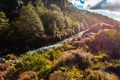 Taranaki cai córrego - parque nacional de Tongariro fotos de stock