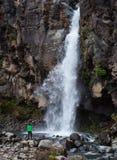 Taranaki Falls Royalty Free Stock Photography