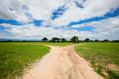 Tarangire landscape in Tanzania Royalty Free Stock Photo