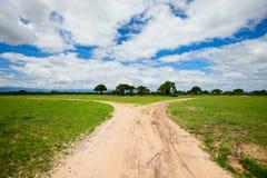 Tarangire landscape in Tanzania Royalty Free Stock Photo
