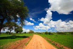 Tarangire national park. Beautiful landscape of Tarangire national park, Tanzania Royalty Free Stock Photo
