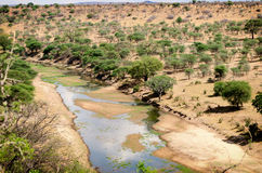 Tarangire National Park Landscape. River in Tarangire National Park, Tanzania Stock Images