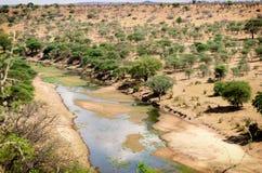 Tarangire nationalparklandskap Arkivbilder