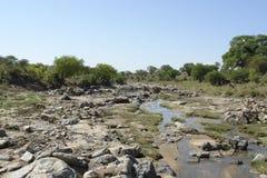 Tarangire River with lots of stones. River in Tarangire National Park in Tanzania Stock Photos