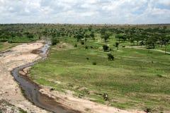 Tarangire River - Tanzania, Africa Royalty Free Stock Image