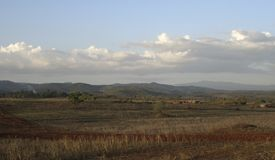 Tarangire scenery in Africa at evening time Stock Image