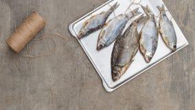 Taranka, ξηραμένα από τον ήλιο αλμυρά ψάρια ποταμών, κλασικό πρόχειρο φαγητό μπύρας Στοκ εικόνες με δικαίωμα ελεύθερης χρήσης