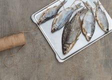 Taranka, Sun Dried Salty River Fish, Classic Beer Snack Royalty Free Stock Photo