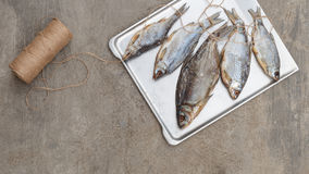 Taranka, Sun Dried Salty River Fish, Classic Beer Snack Royalty Free Stock Images
