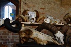 Tarantasica Castello Visconteo Pandino - giugno 2018 dell'IL 3 immagini stock libere da diritti