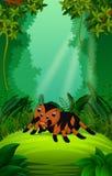 Tarantel utom fara och grön skog royaltyfri illustrationer