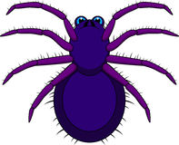 Tarantula Cartoon. Illustration of Tarantula Cartoon isolated on white Royalty Free Stock Images