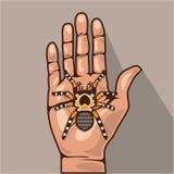 Tarantula in a hand Royalty Free Stock Image