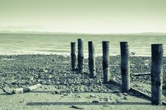 Tararu Beach, Thames, Coromandel. Stock Photos