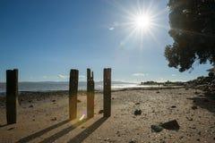 Tararu Beach, Thames, Coromandel. Royalty Free Stock Image
