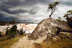 Taras Gorących wiosen Yellowstone Mamutowy park narodowy obrazy royalty free
